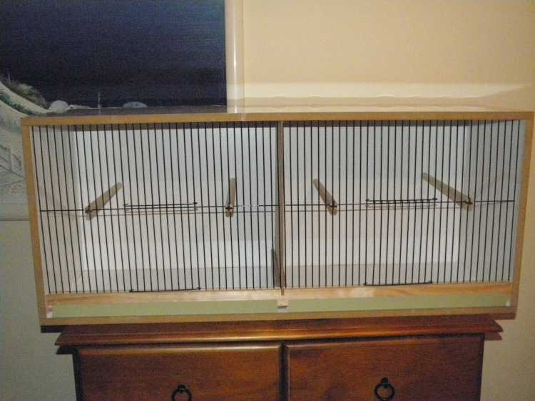 canary large double breeding cabinet with removabl